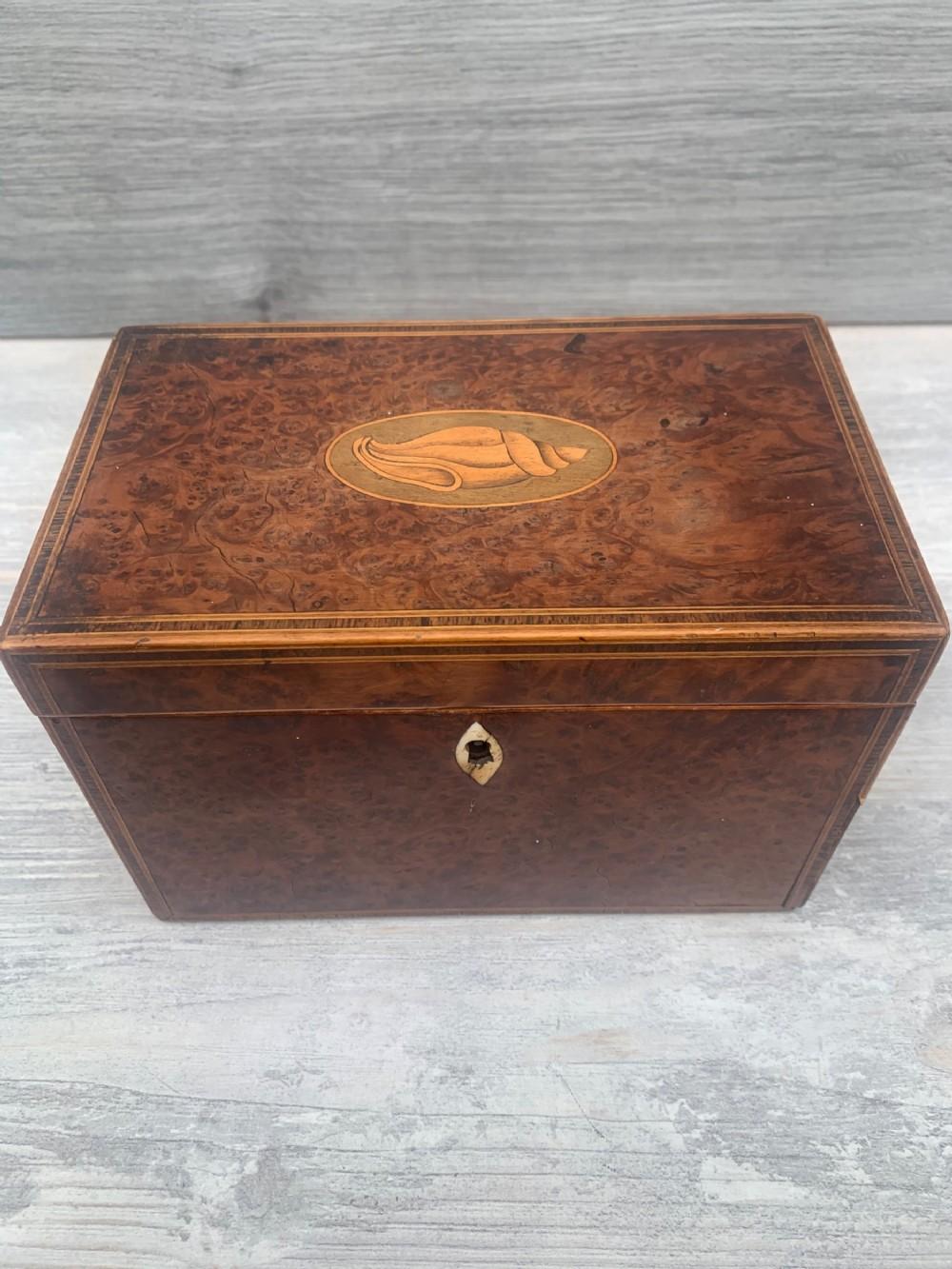 super all original georgian tea caddy maple wood with inlays
