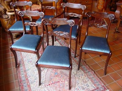 a set of 6 rosewood late regency george iv sabre leg dining chairs