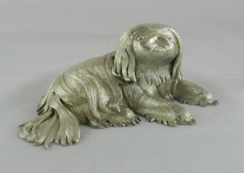 silver pekingese dog