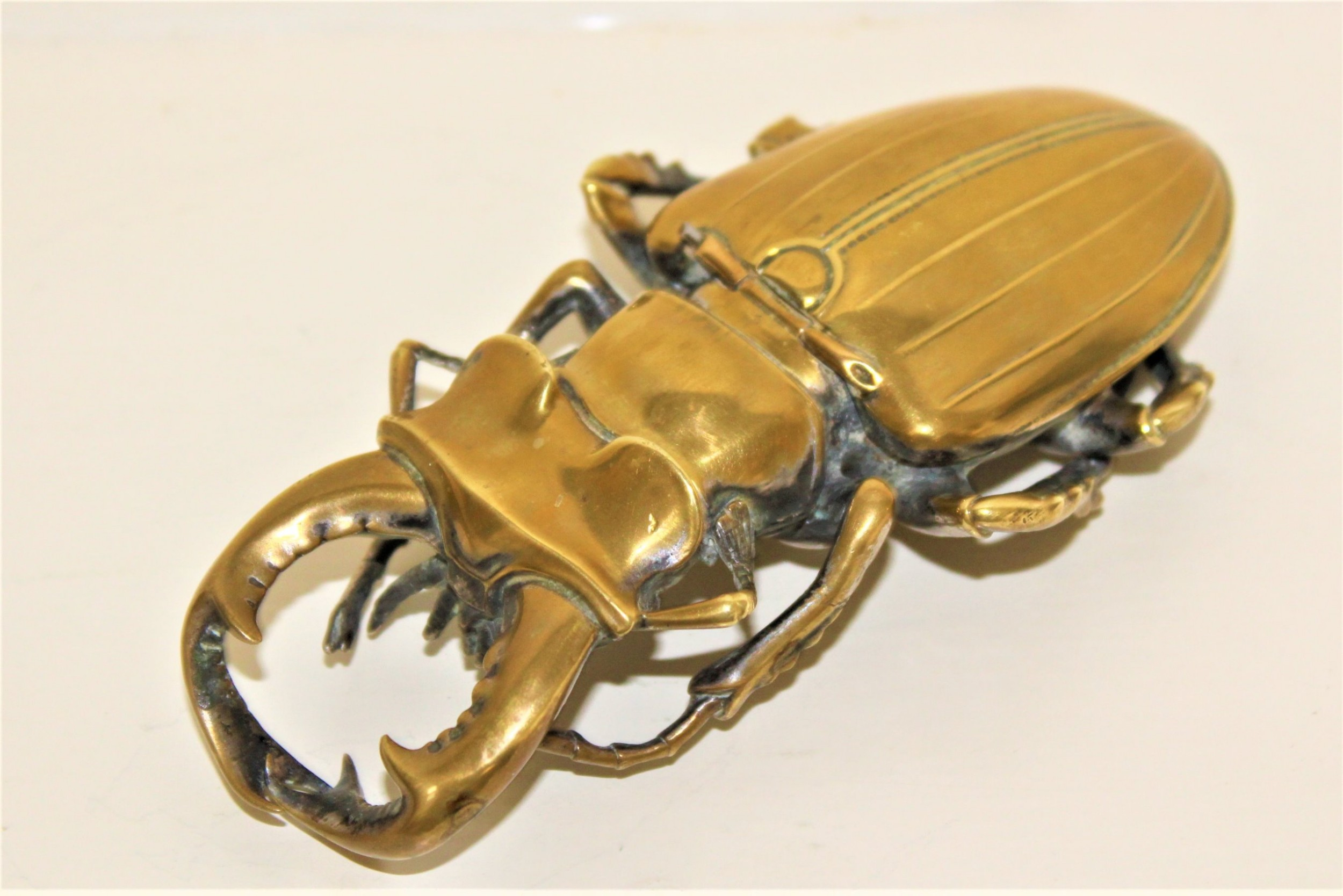 heavy cast and well formed polished bronze stag beetle container possibly japanese circa 1880