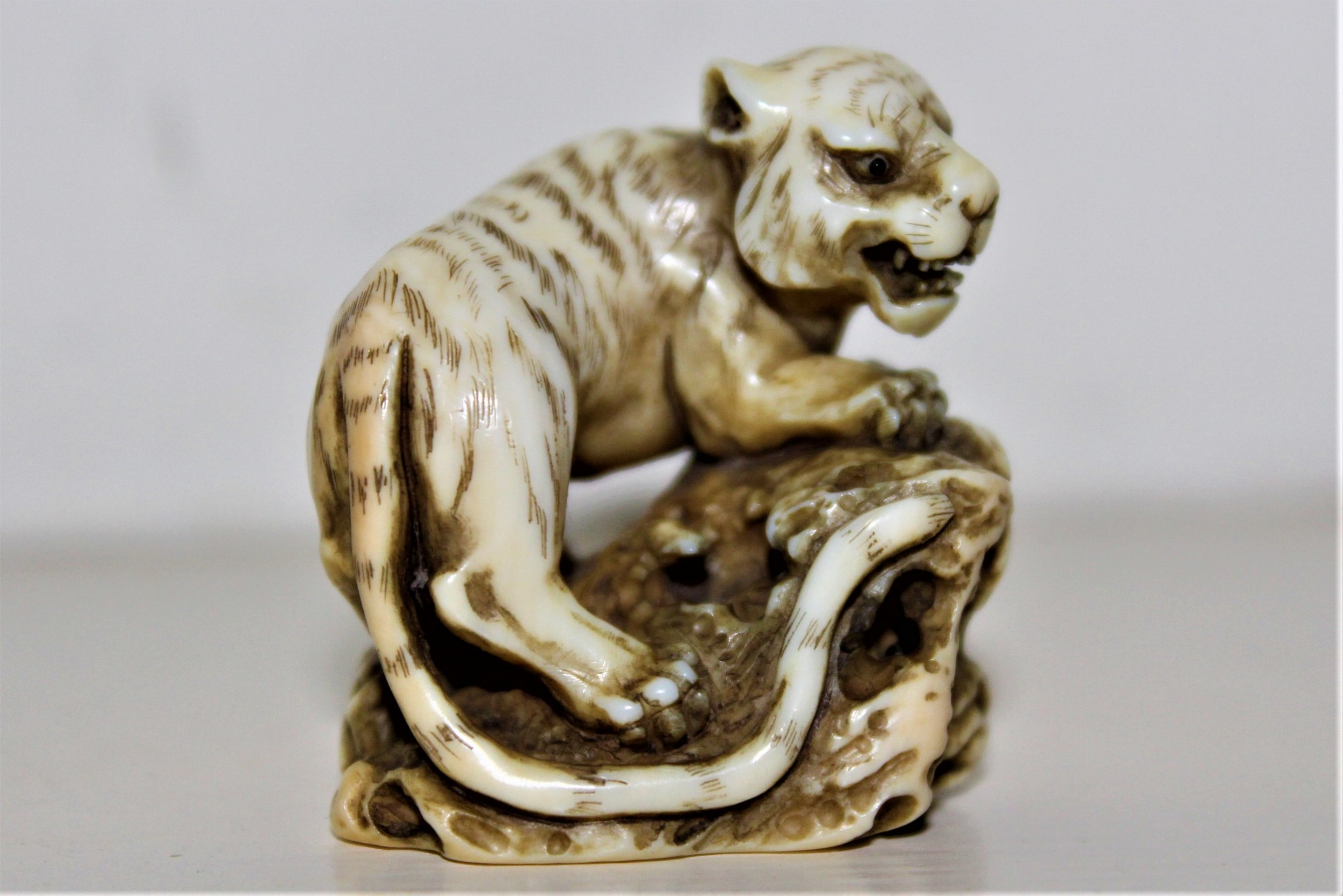 a rare and finely carved ivory netsuke of a tiger and signed by masatomo edo period circa 1850