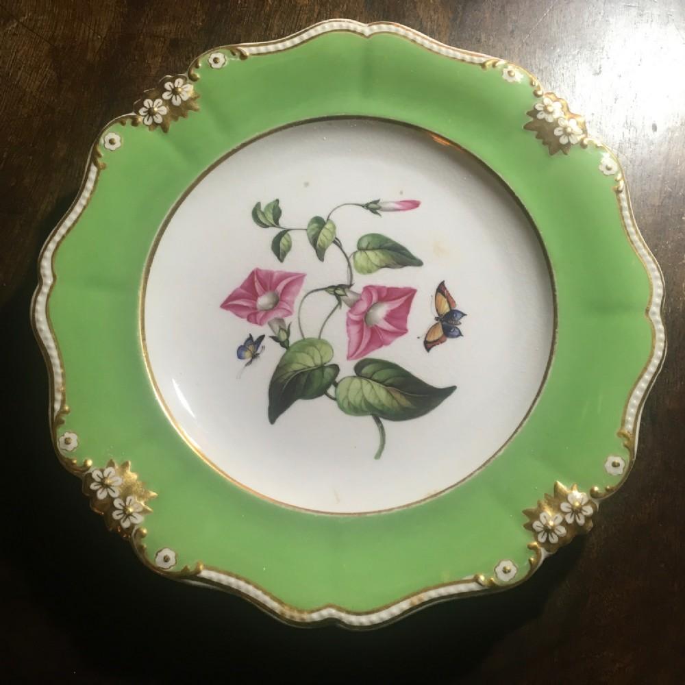 bloor derby green ground botanical plate c1825