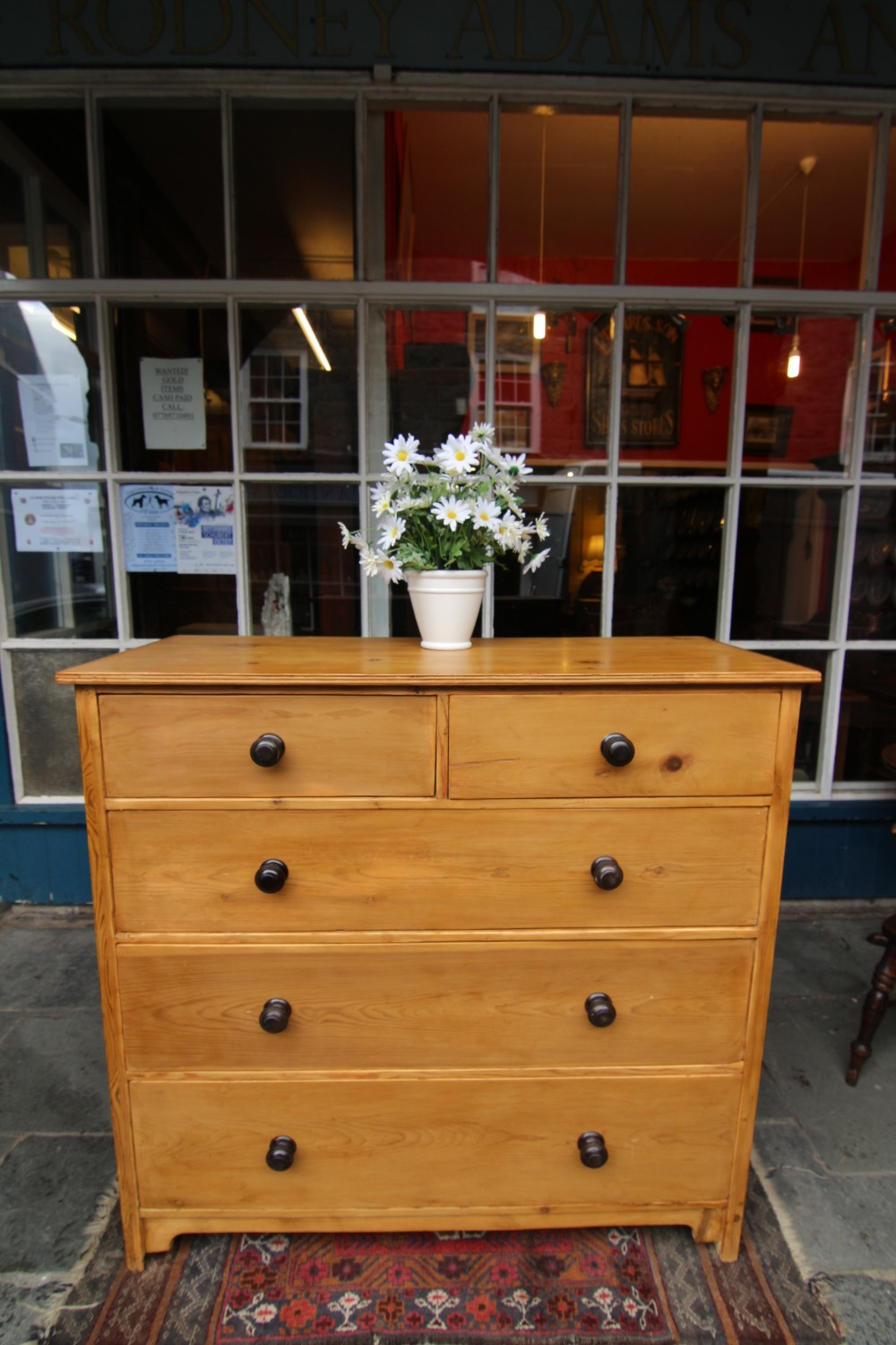 large 19th century pine chest of 5 drawers with ebony turned handles