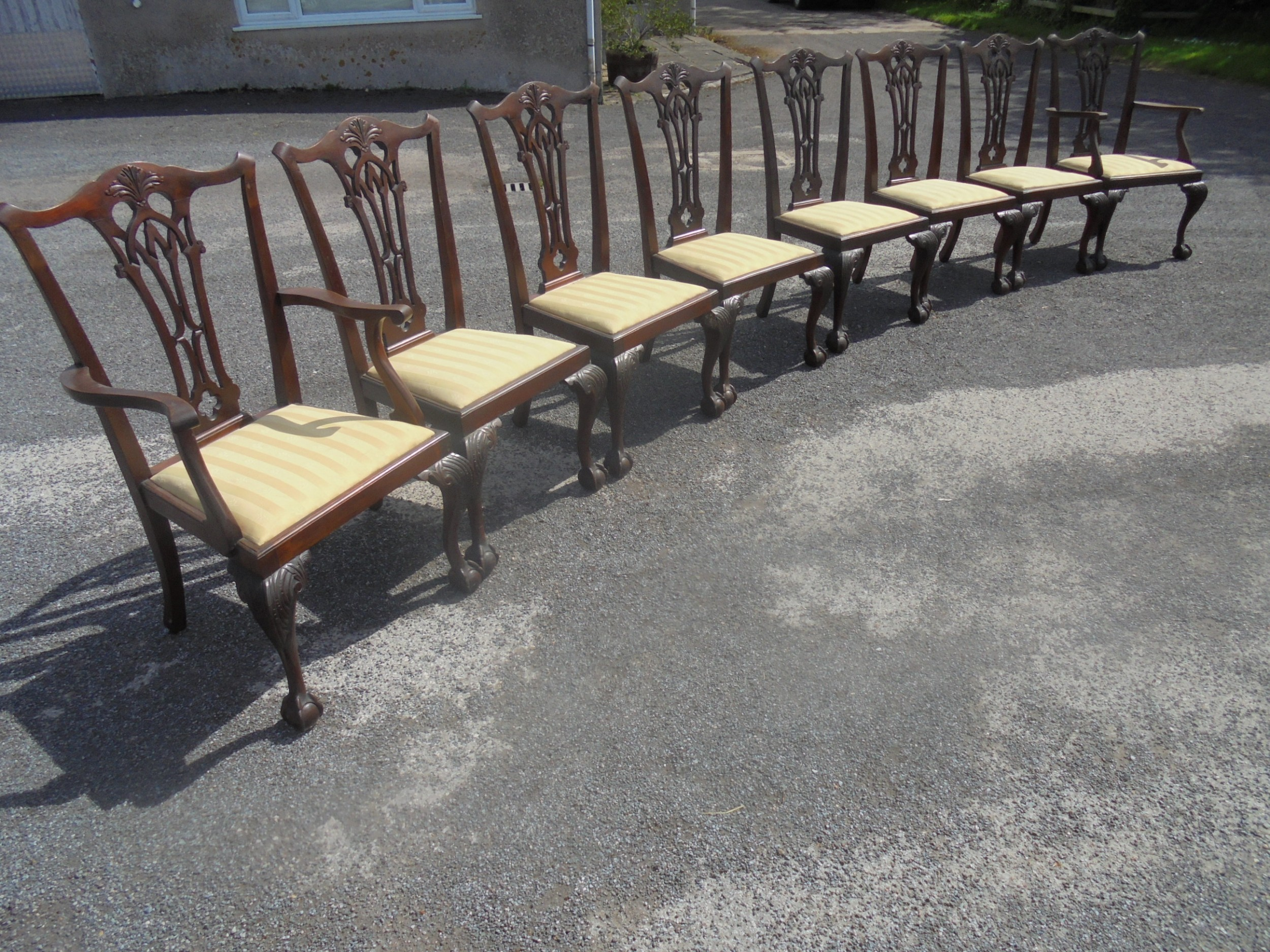 set of eight mahogany ball and claw chippendale style dining chairs
