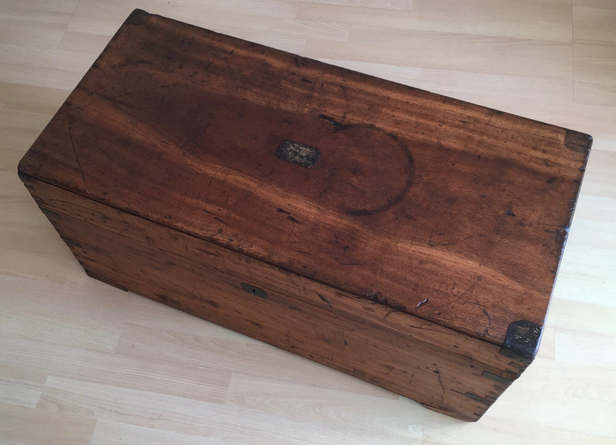 victorian camphor wood box or trunk