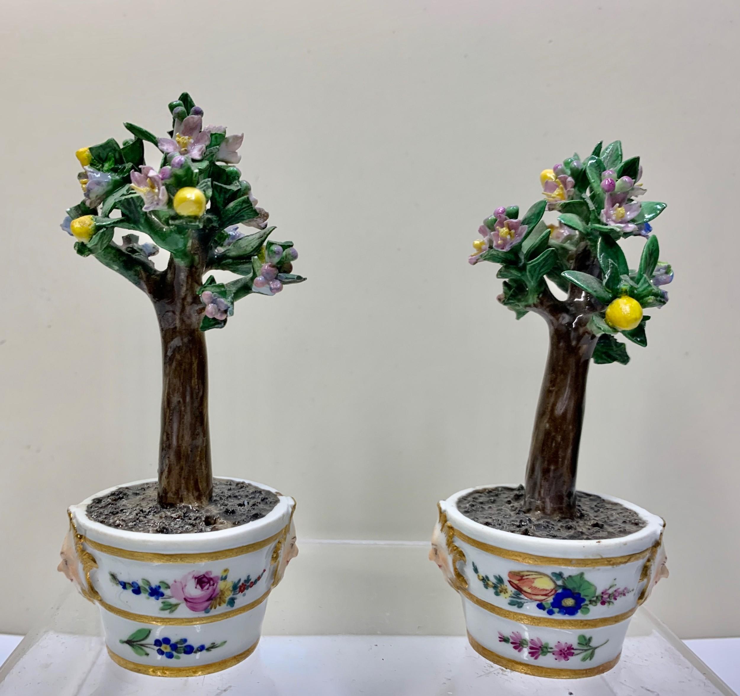 rare pair meissen marcolini lemon trees in tubs circa 1790 porcelain