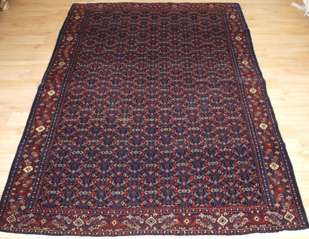 antique persian senneh rug all over fine heratti design circa 1900