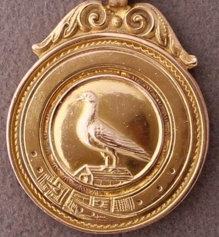 gold pigeon racing award medallion