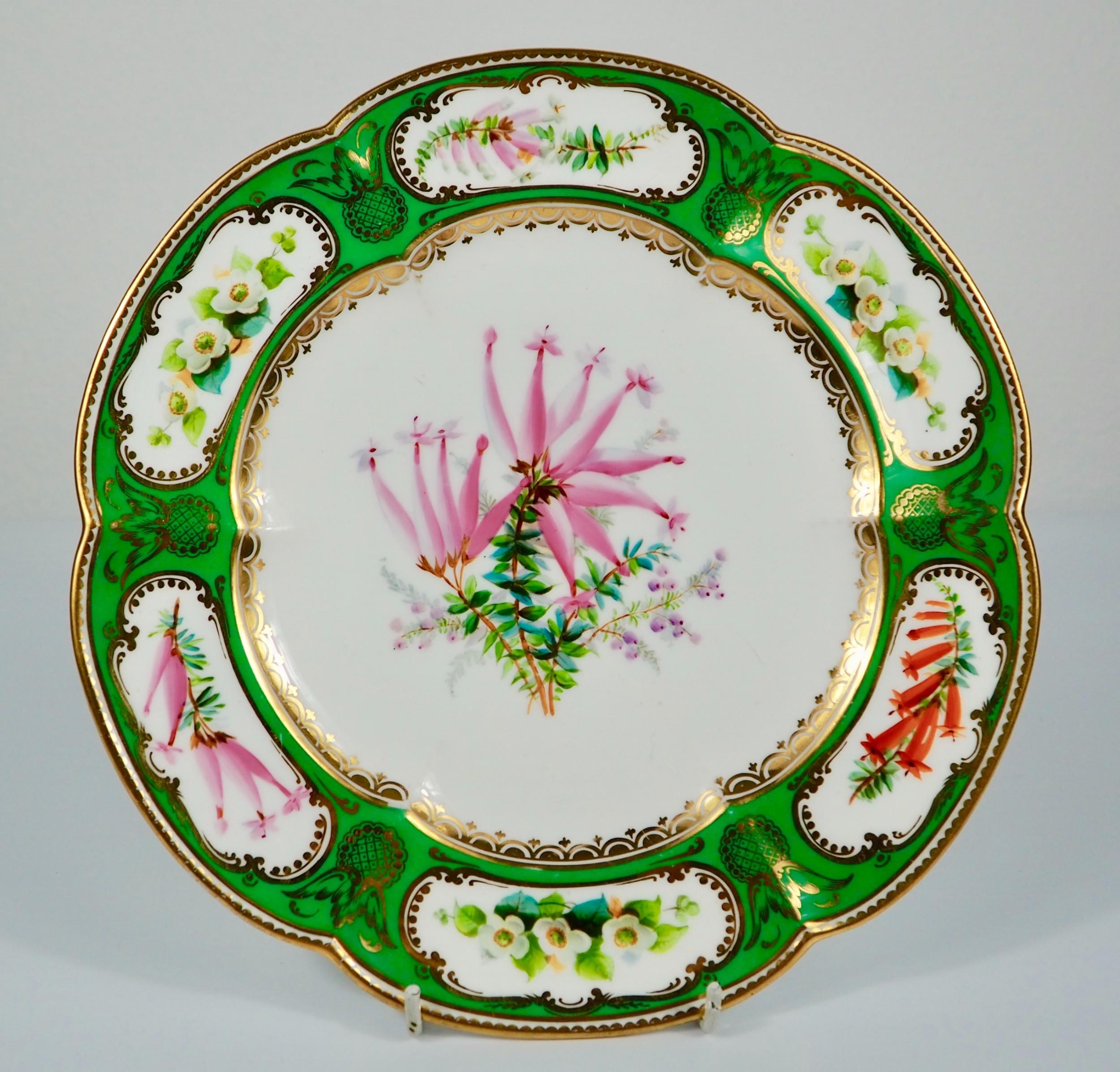 coalport botanical dessert plate six lobed rim hand painted flowers c1860