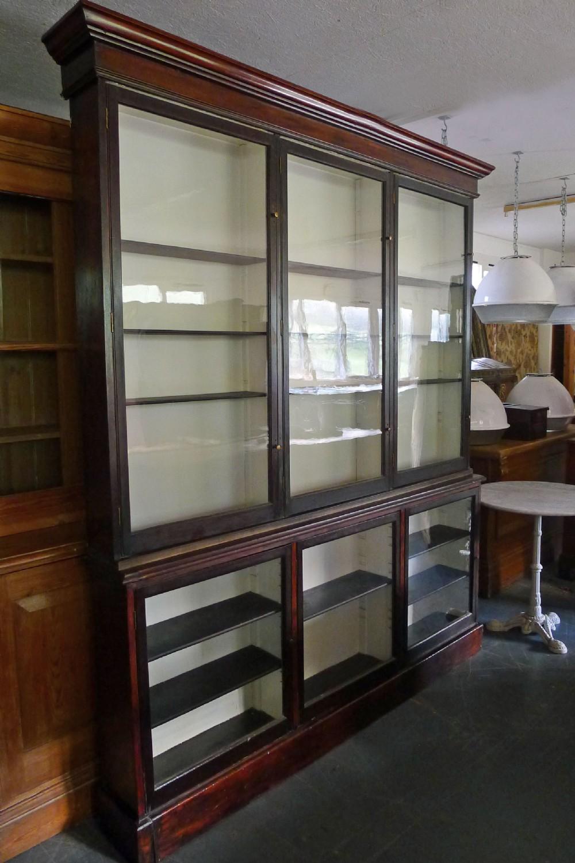 victorian dark mahogany apothecary's cabinet