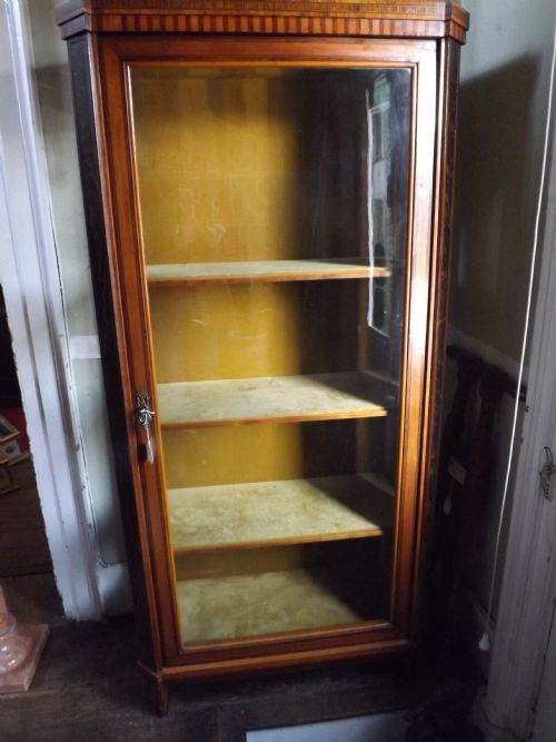 c19th dutch satinwood vitrine display cabinet