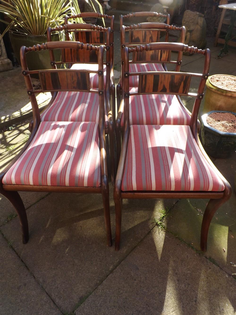 set of 6 early c19th regency period mahogany and coromandel wood sabreleg dining chairs