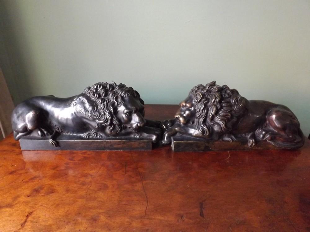 pair of late c19th 'grand tour' souvenir bronze lions after antonio canova