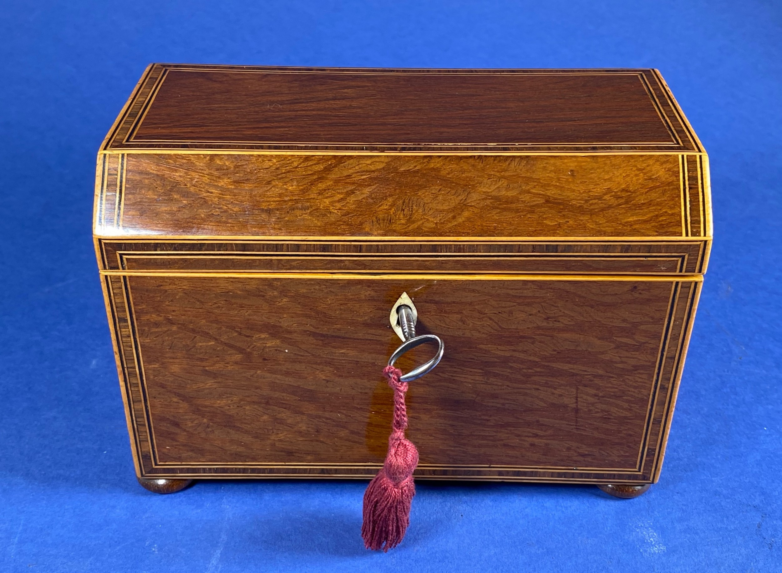 georgian partridge wood canted top tea caddy with inlay