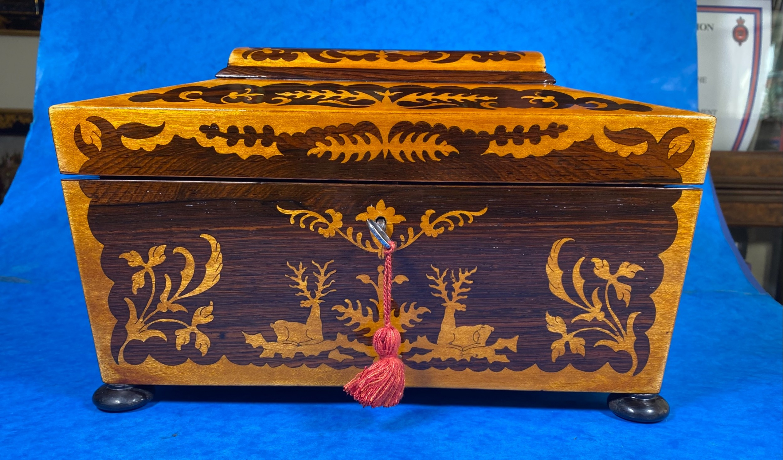 william iv maple and rosewood marquetry tea caddy