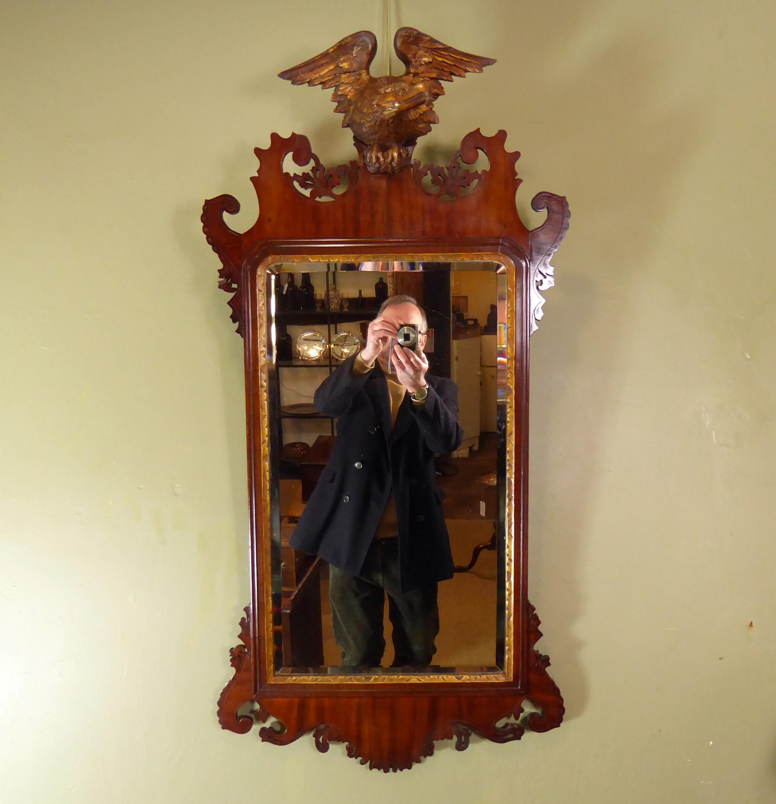 19th c mahogany mirror with giltwood eagle