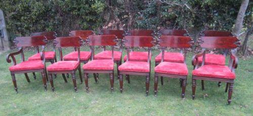 twelve william iv mahogany dining chairs