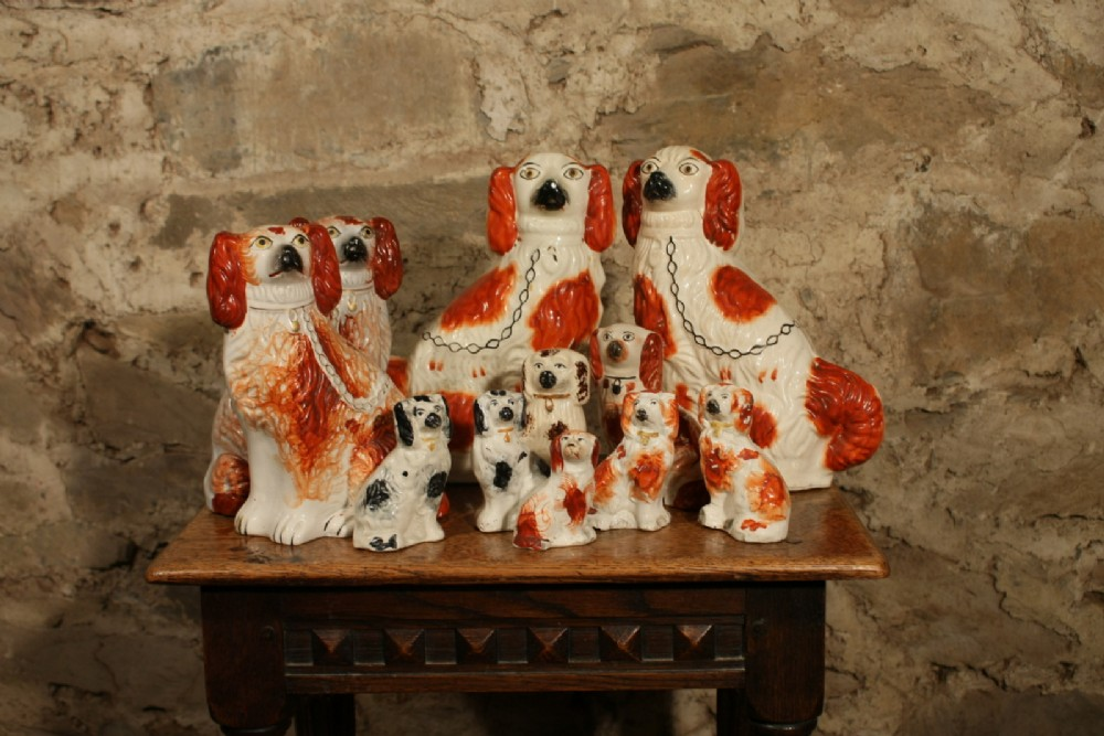 collection of staffordshire dogs