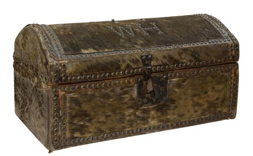 Edwardian (1901-1910) Diplomatic Wood Bound Canvas Steamer Travel Trunk Old Luggage Suitcase