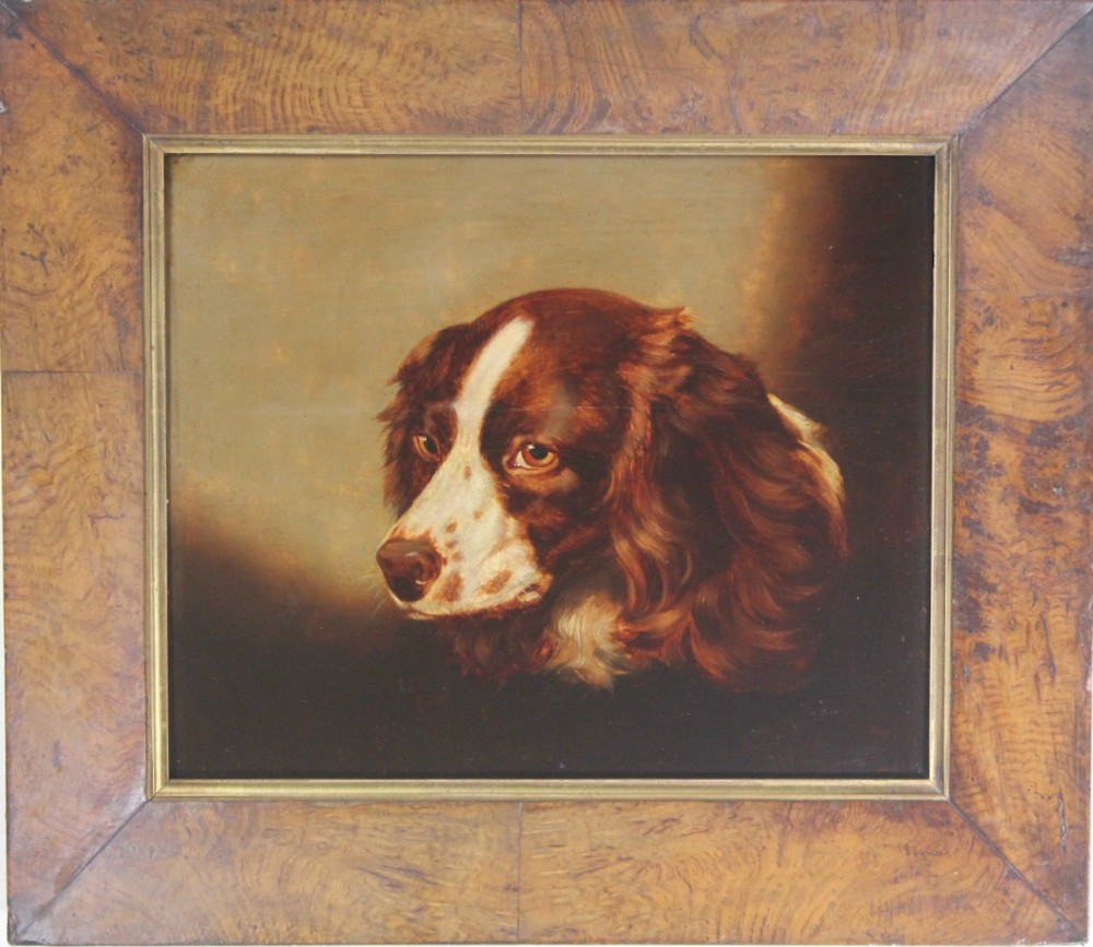 portrait of a springer spaniel oil painting on panel dog
