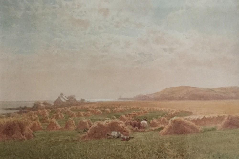 james whaite watercolour cornfield isle of man