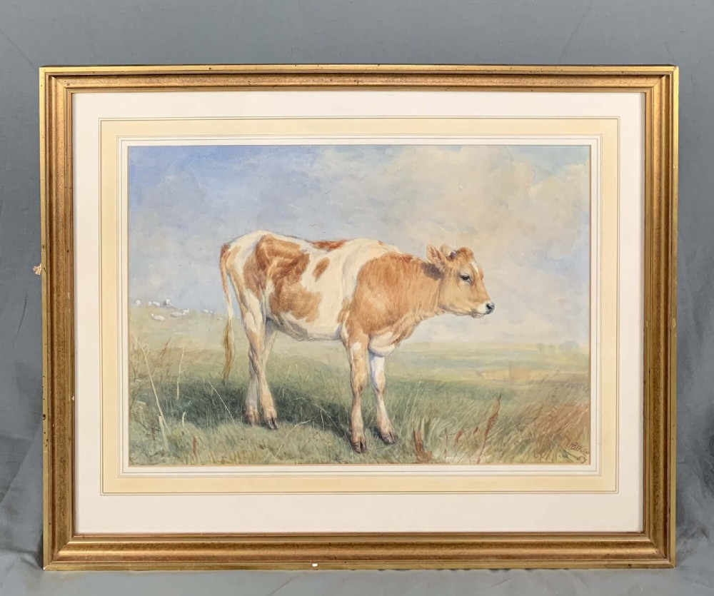 mid 19th century animal study of a calf by henry brittan willis 18101884