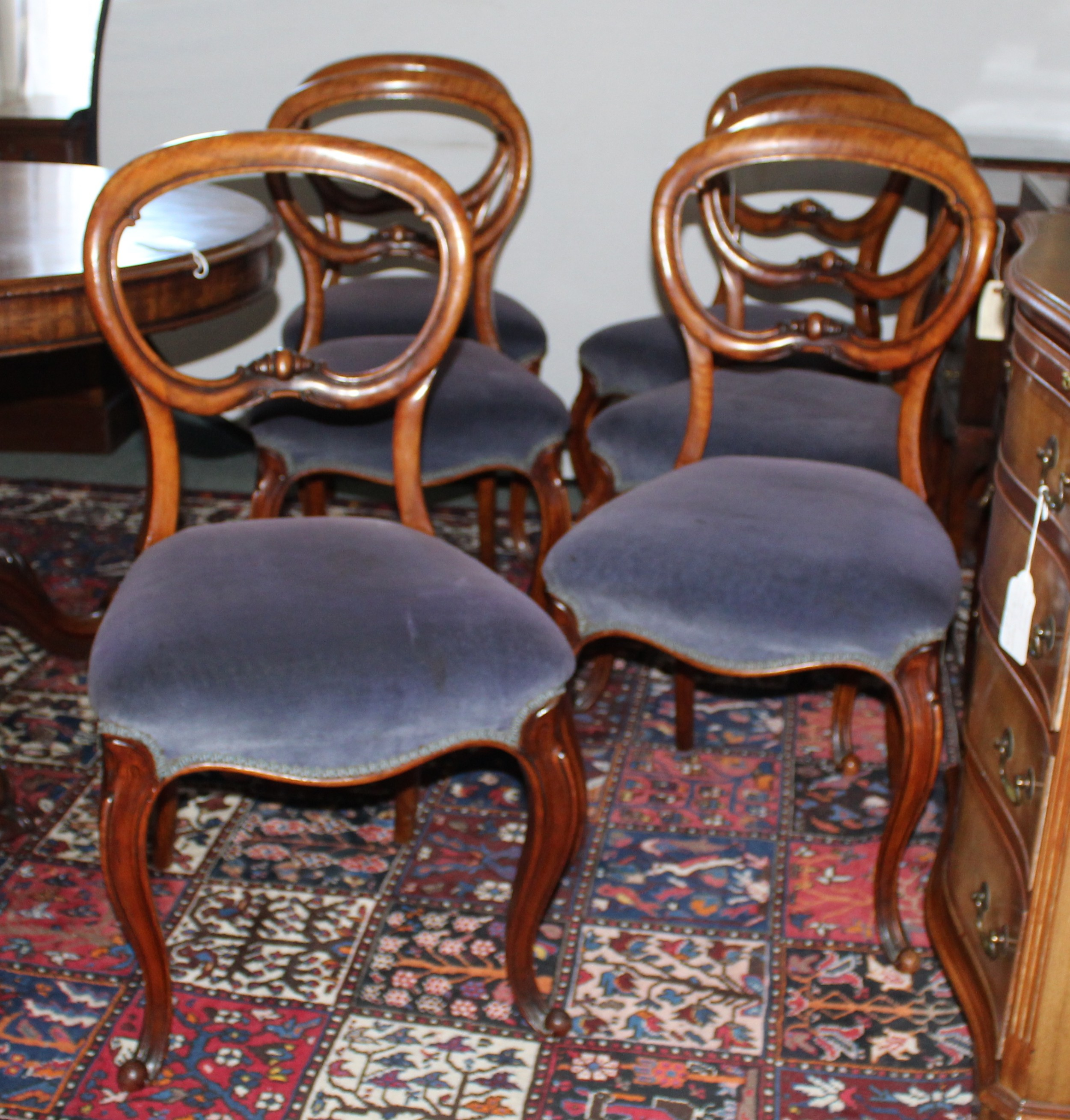 set of six victorian walnut balloon back dining chairs