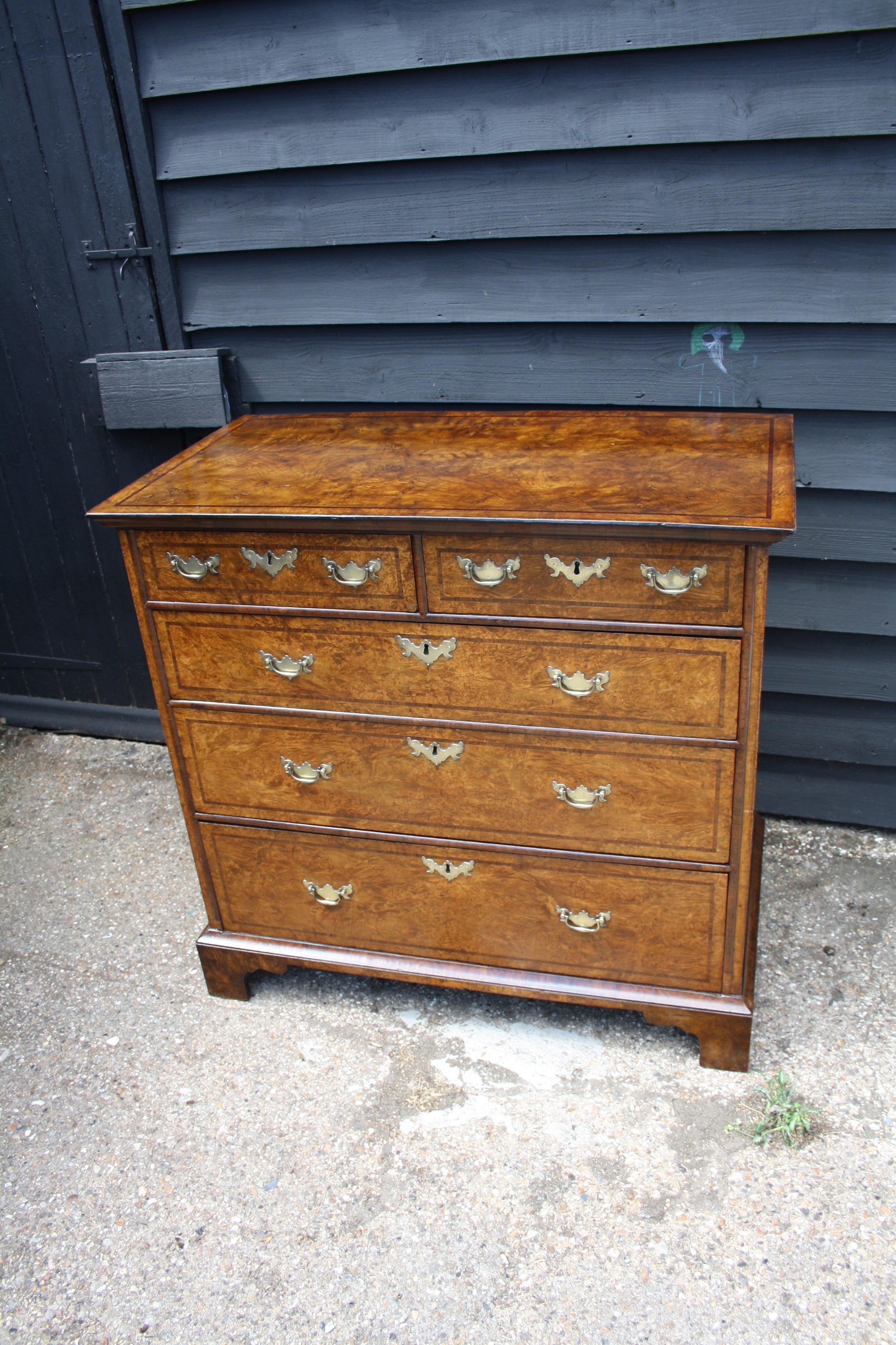 early 18th century burr ash chest of drawers