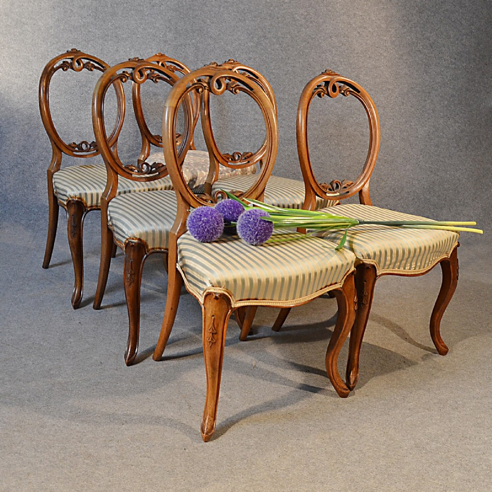 antique set six early victorian walnut dining chairs english balloon back  c1850 - Antique Set Six Early Victorian Walnut Dining Chairs English