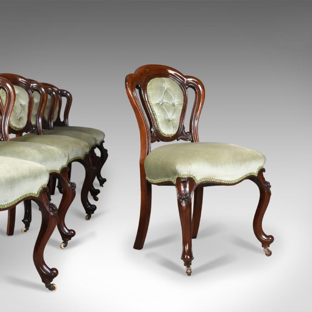 antique set of six dining chairs english regency mahogany circa 1830