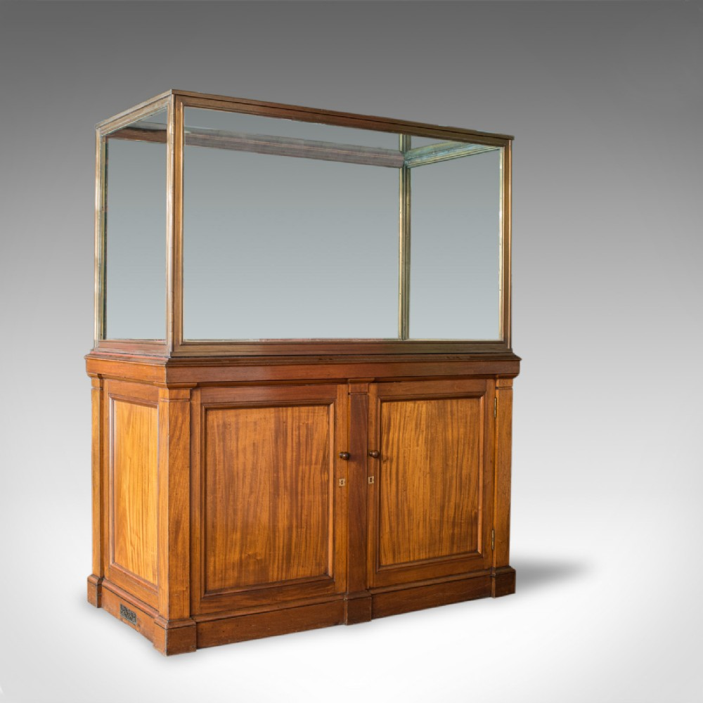 antique display cabinet english walnut bronze showcase museum circa 1900