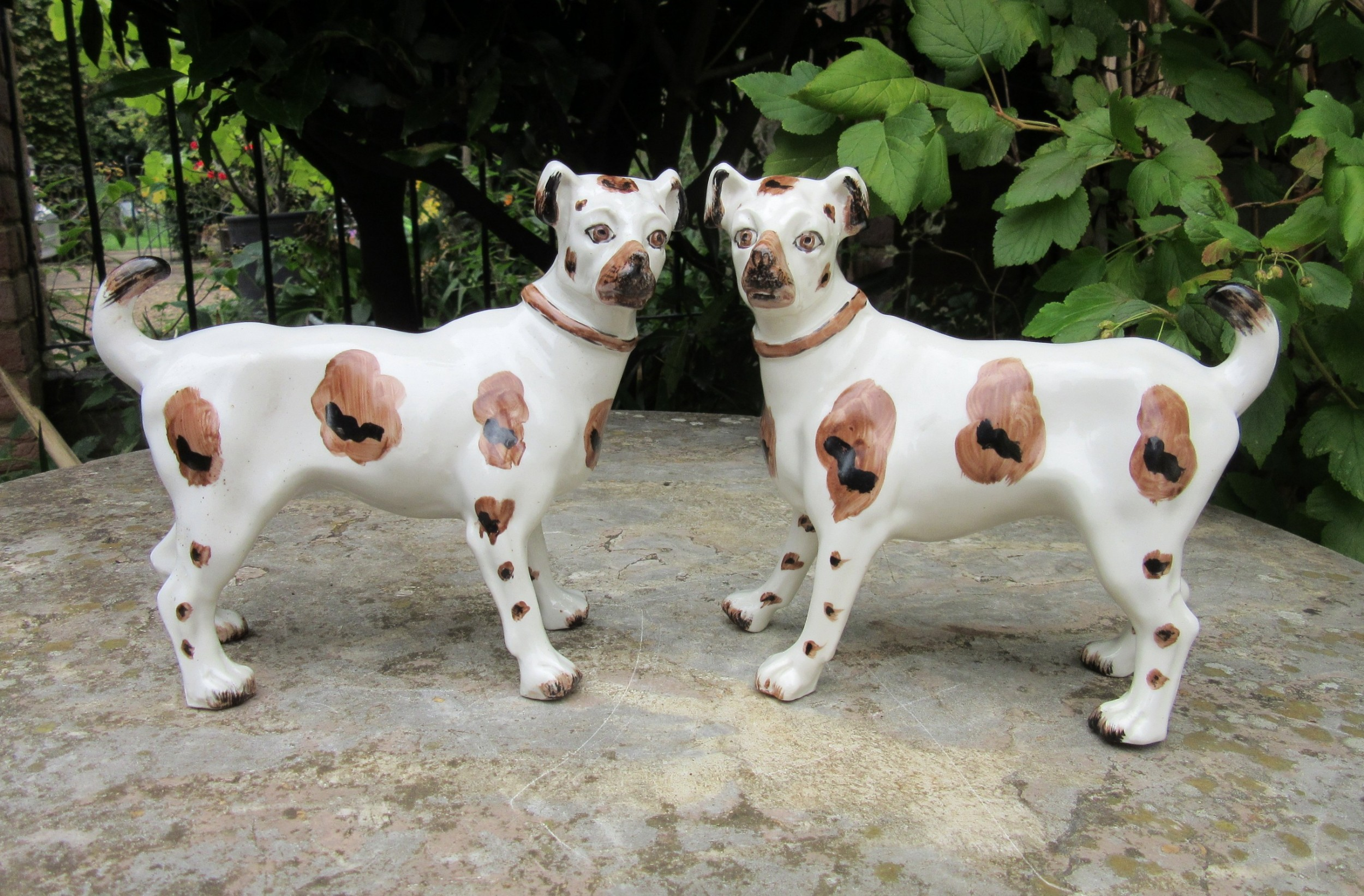 rare pair of victorian staffordshire dogs terriers c1870