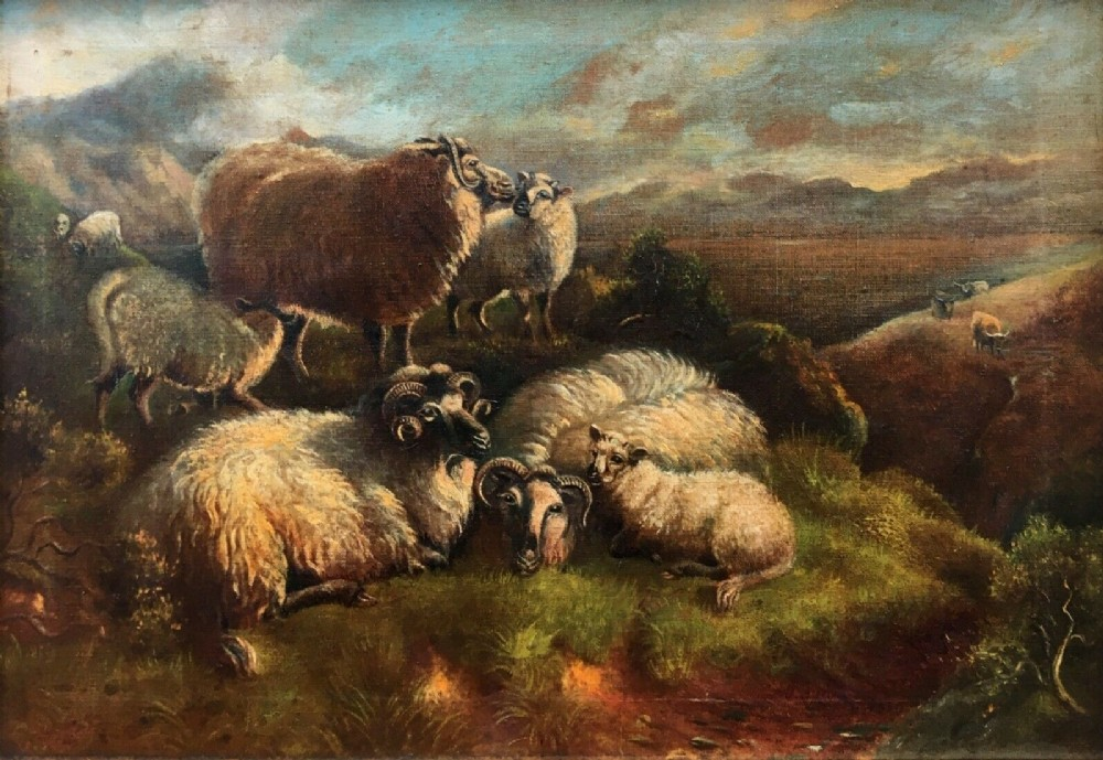 original antique signed c19th oil painting on canvas sheep resting with lambs scottish highland landscape