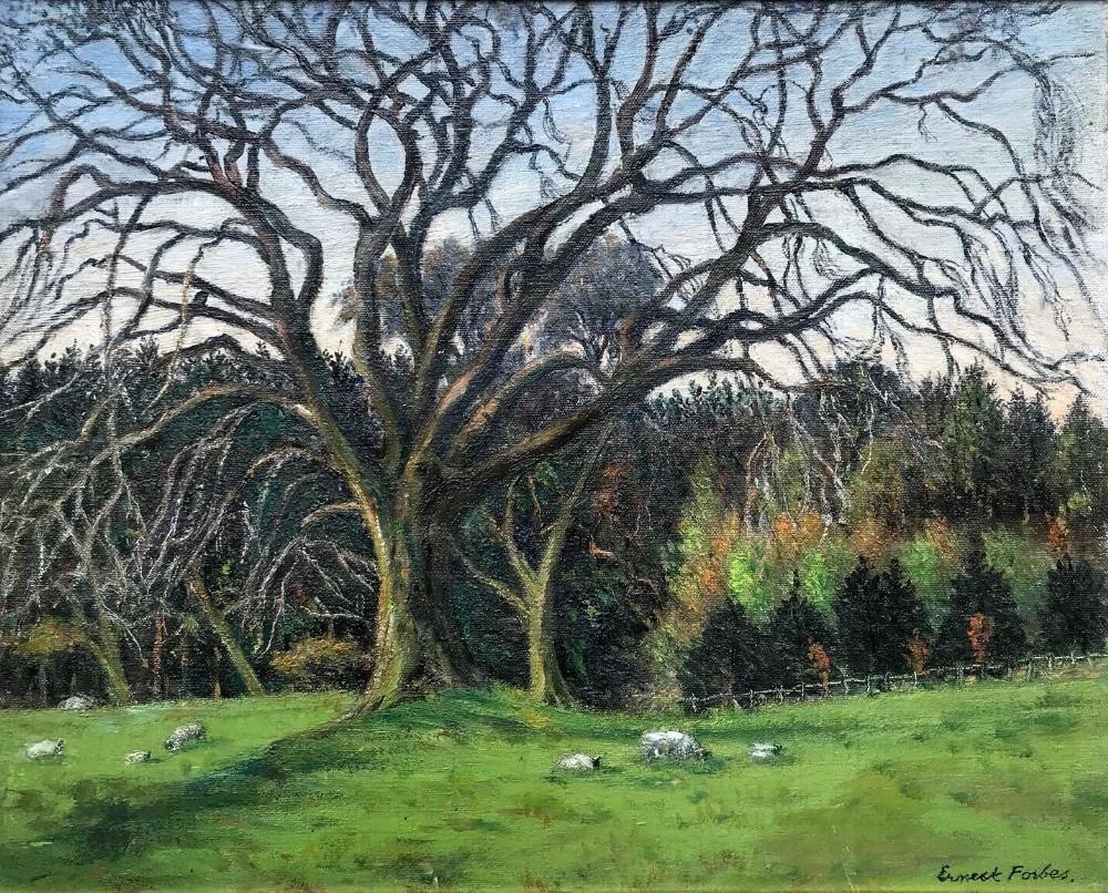 ernest forbes rba signed original oil painting yorkshire landscape trees sheep