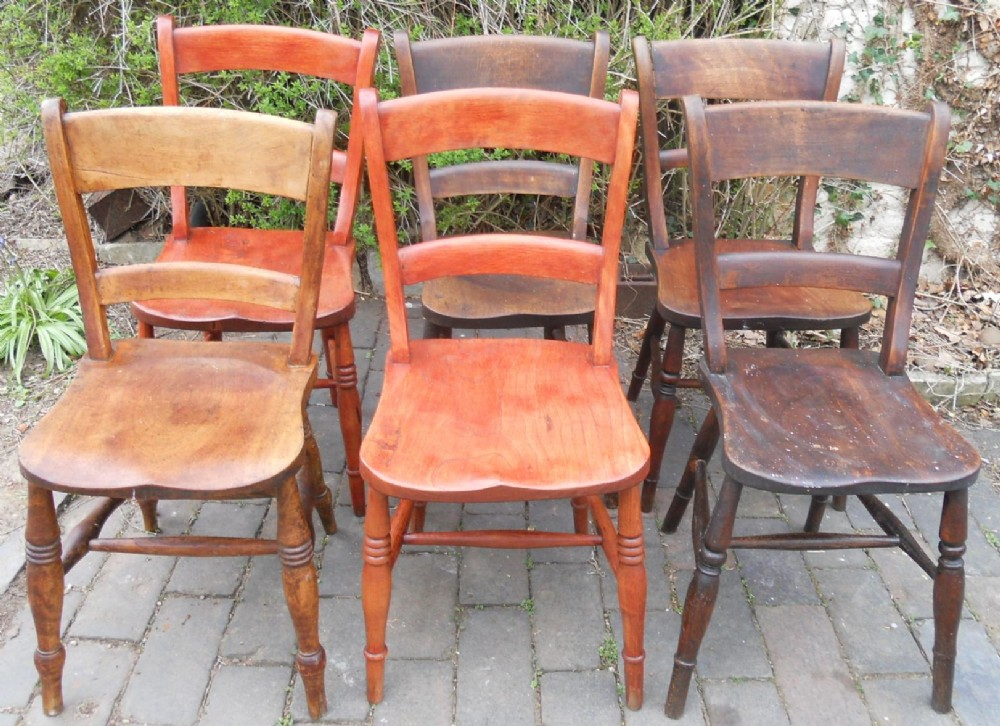 six elm beech oxford kitchen chairs
