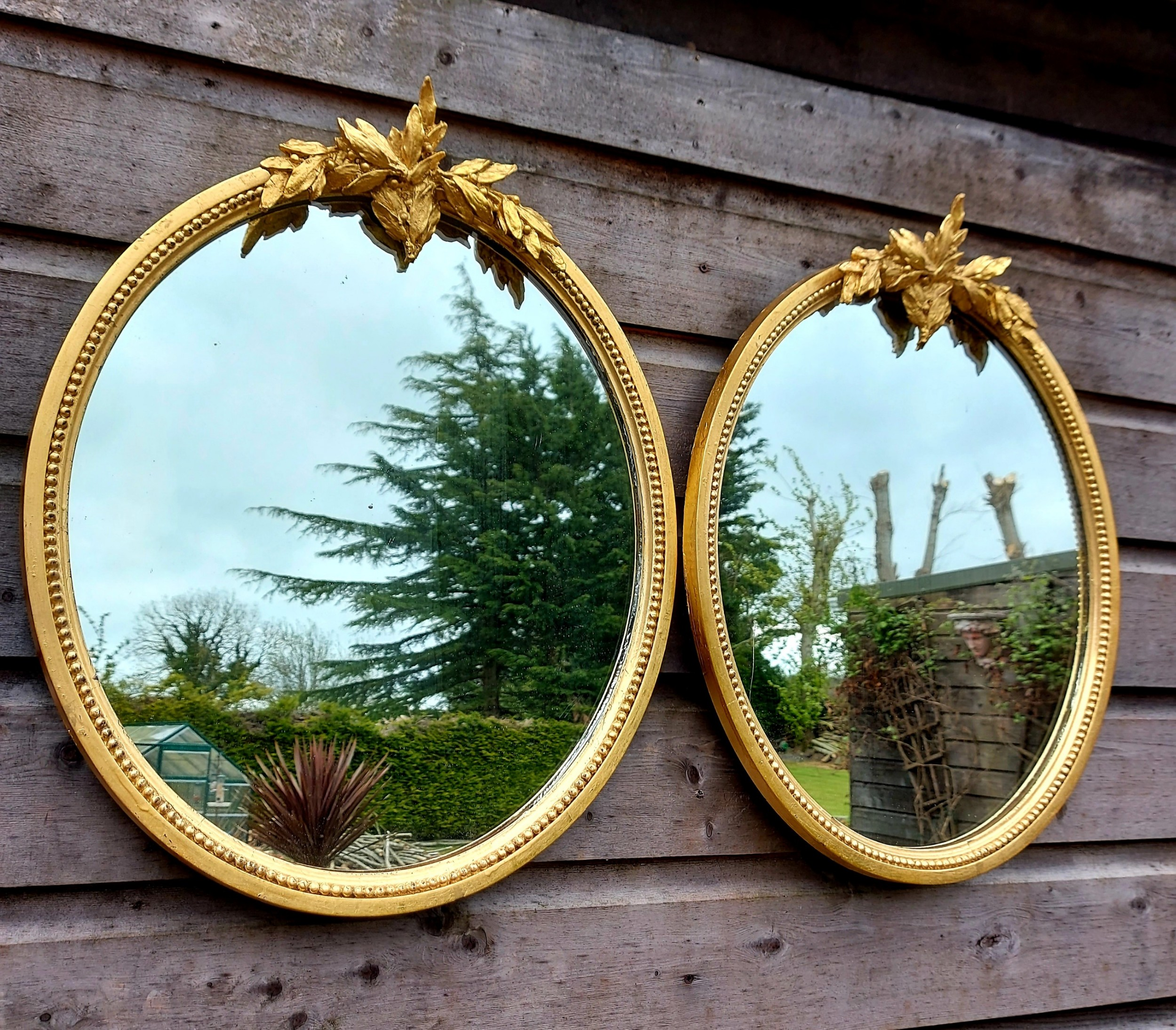 a pair of edwardian oval gilt mirrors