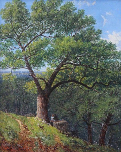 Bradgate Park Leicestershire John Holland Snr Oil Painting 643924 Sellingantiques Co Uk