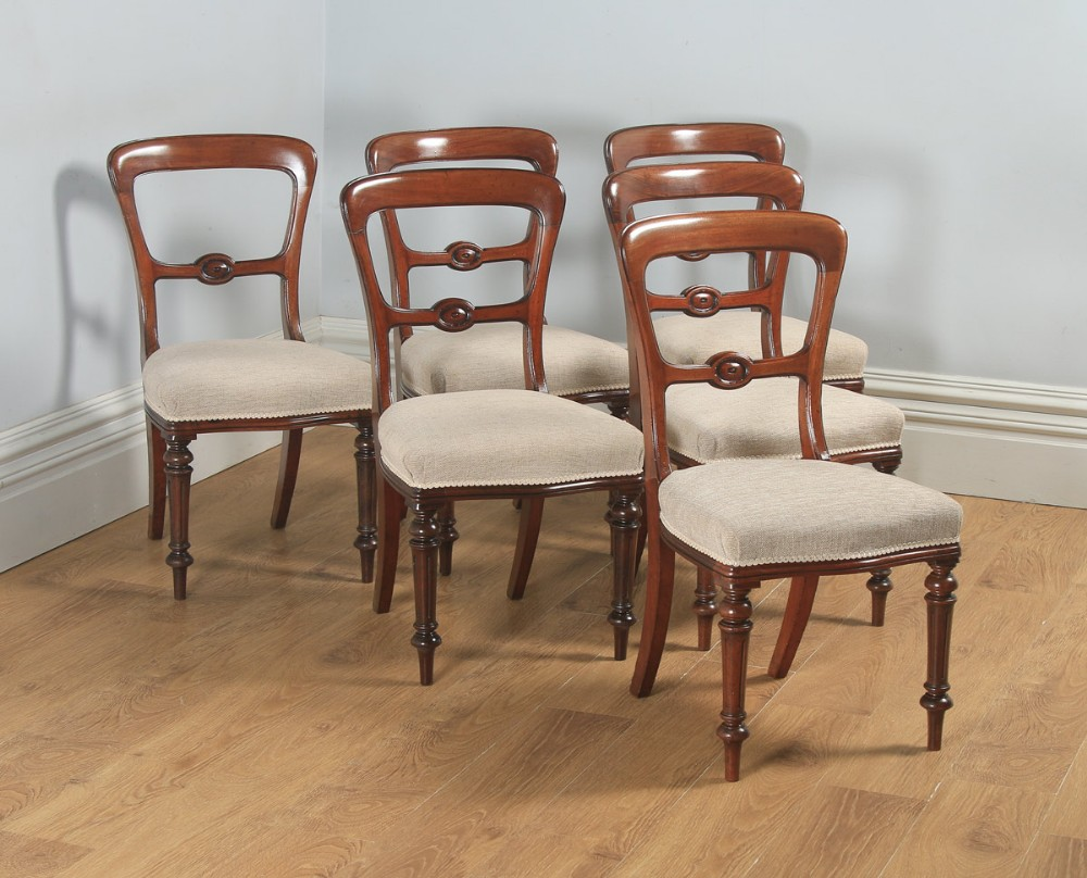 antique english 19th century victorian set of six walnut balloon back dining chairs circa 1880