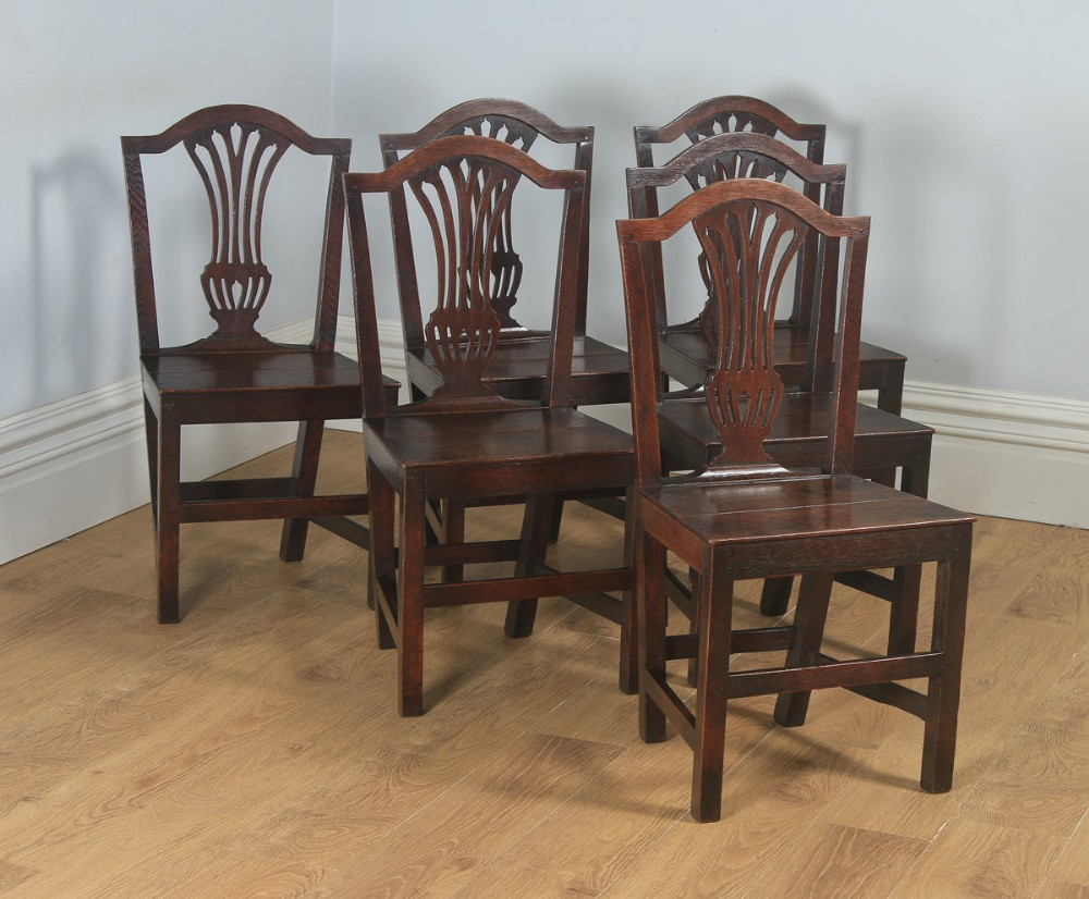 antique english set of six georgian hepplewhite solid oak country dining chairs circa 1800